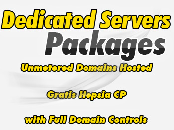Cheap dedicated hosting server providers